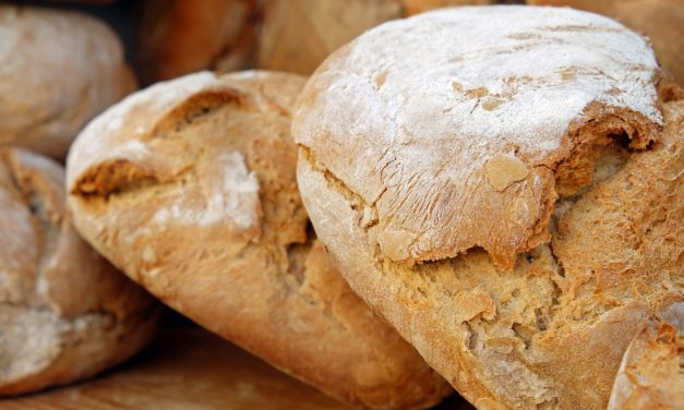 Il pane sciocco